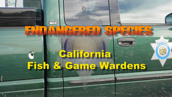 Snow goose productions about us for Calif fish and game